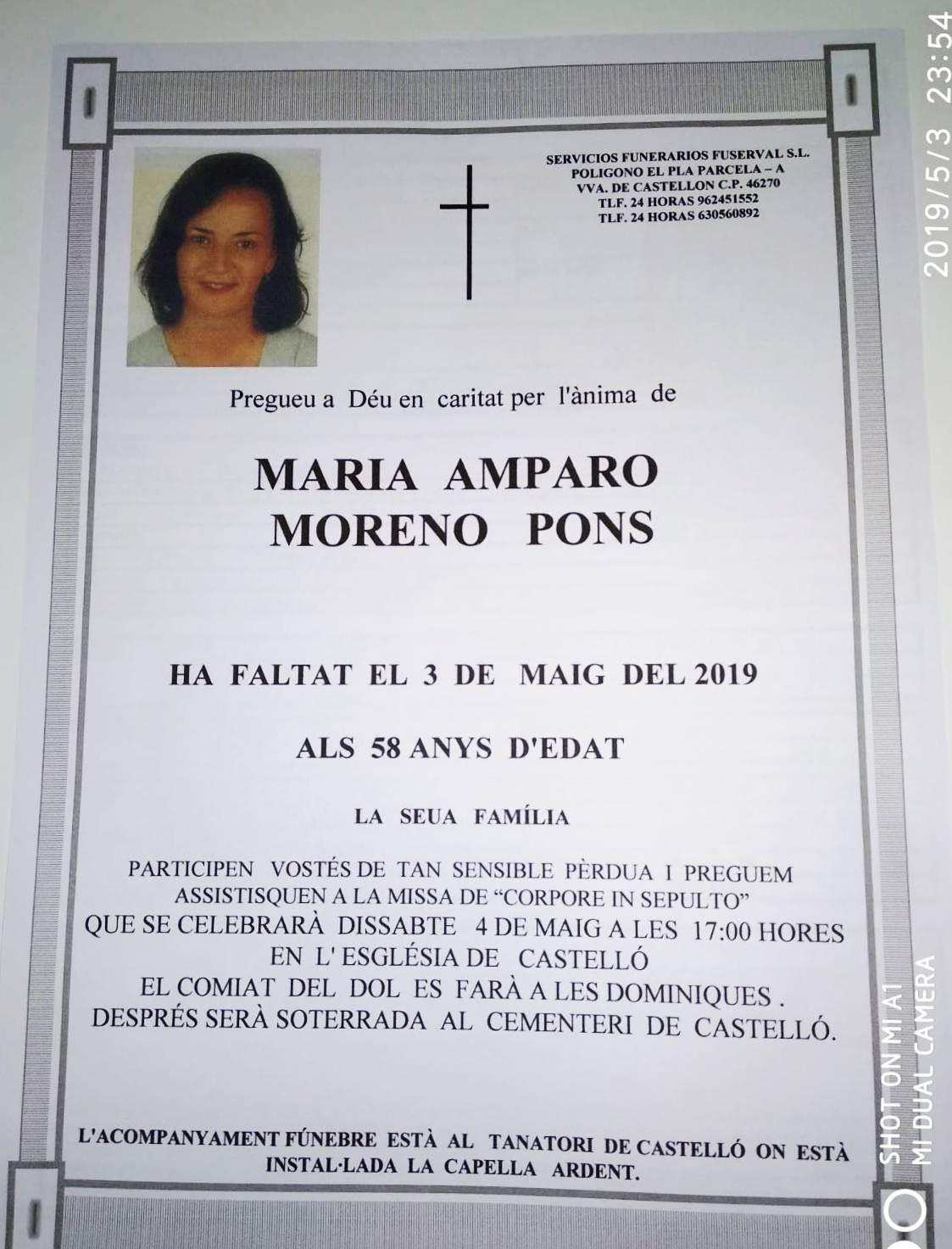 MARIA AMPARO MORENO PONS