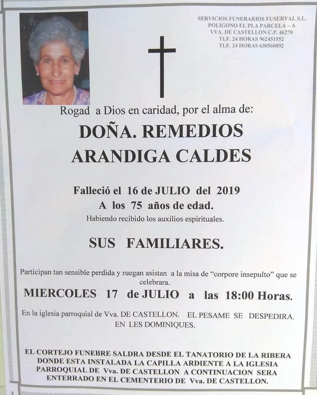 REMEDIOS ARANDIGA CALDES